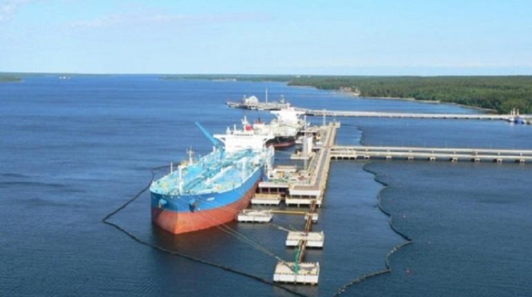 ВЛенобласти могут сделать  свободный порт