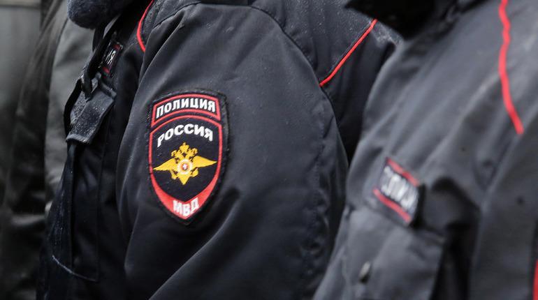 Немолодую мошенницу поймали петербургские полицейские на Вологодчине