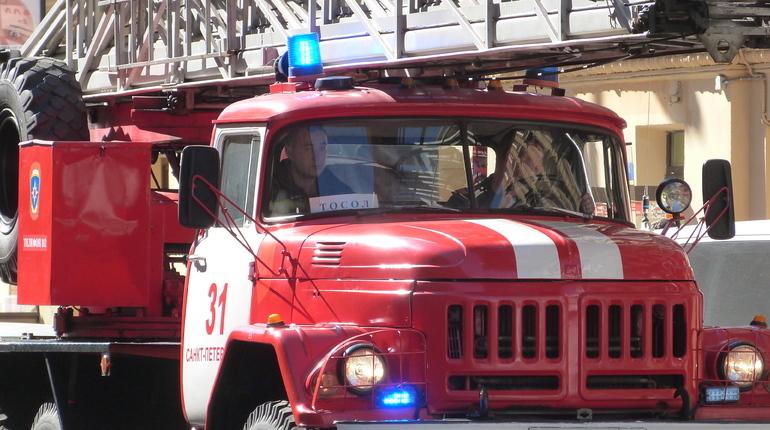 Свидетели  сняли навидео полыхающий строительный кран вблизи Дворцовой площади