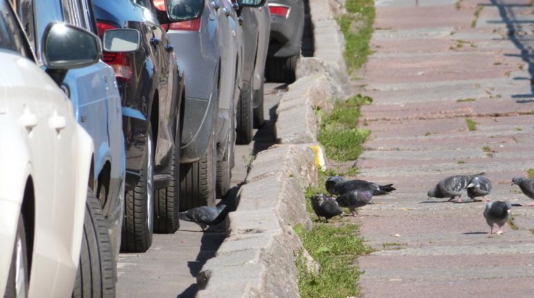 КС признал законными штрафы за неоплаченную парковку