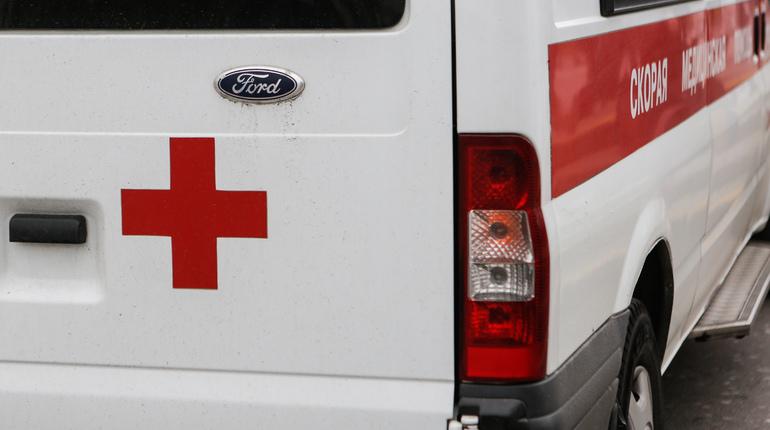 ВСертолово под машиной погибла 8-летняя девочка навелосипеде