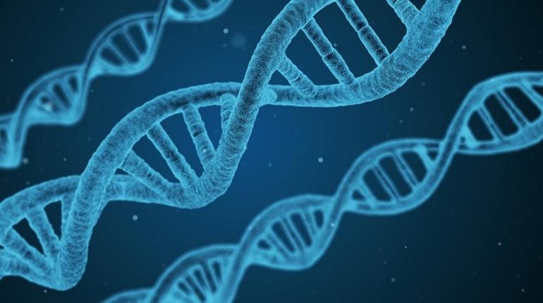 Ученые записали на ДНК музыкальный альбом'Massive Attack