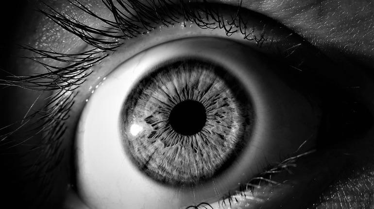 Труп с фальшивым глазом нашли у нефтепровода в Ленобласти