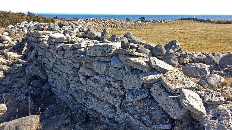 Загадочная резня в древней Скандинавии: жители убиты, ценности не тронуты