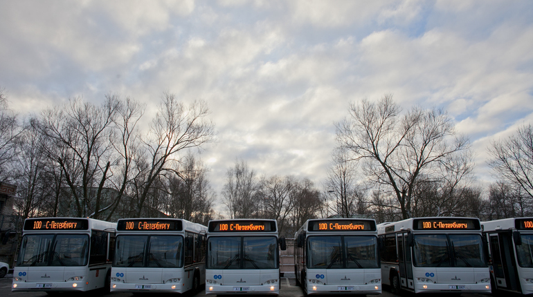 Петербургский «Пассажиравтотранс» купит 61 газовый автобус за912,5 млн руб.