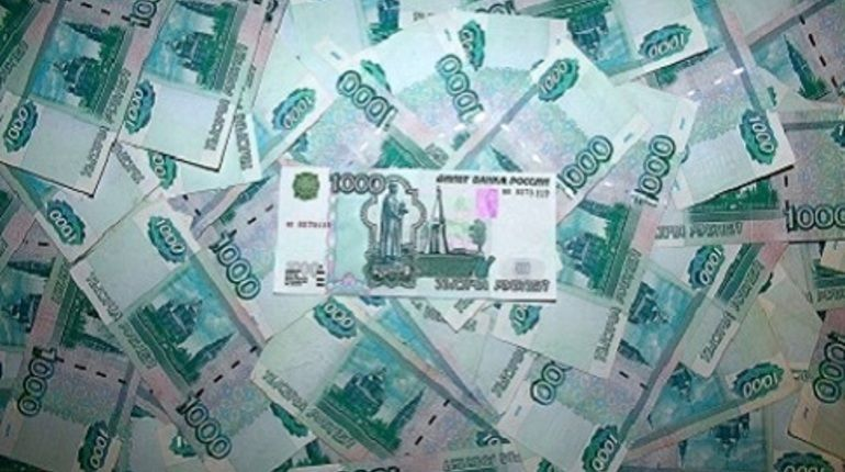 Депутатов в Приморском районе уличили в сокрытии доходов