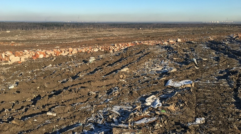 В Петербурге планируют рекультивировать мусорный полигон
