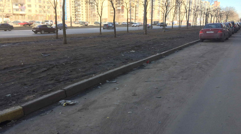 Петербуржцам предложили измерить количество пыли на улицах