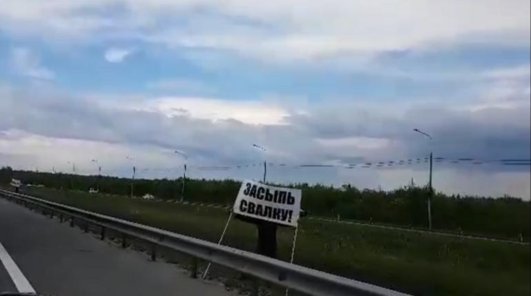 Жители Приморского и Выборгского района устроили акцию под лозунгом