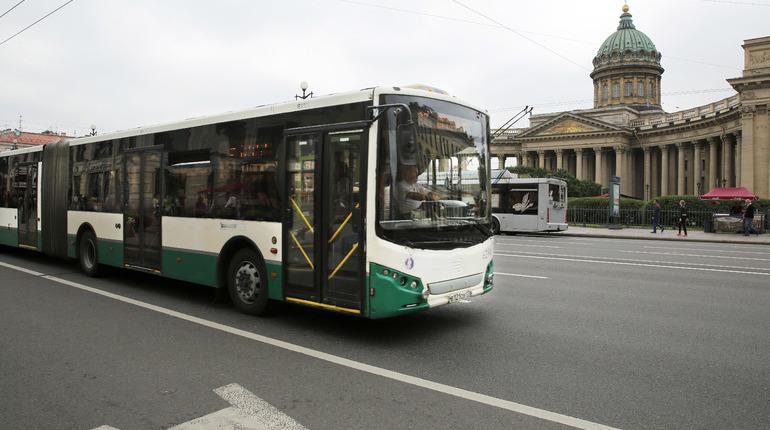 Автобусы будут возить петербуржцев всю ночь