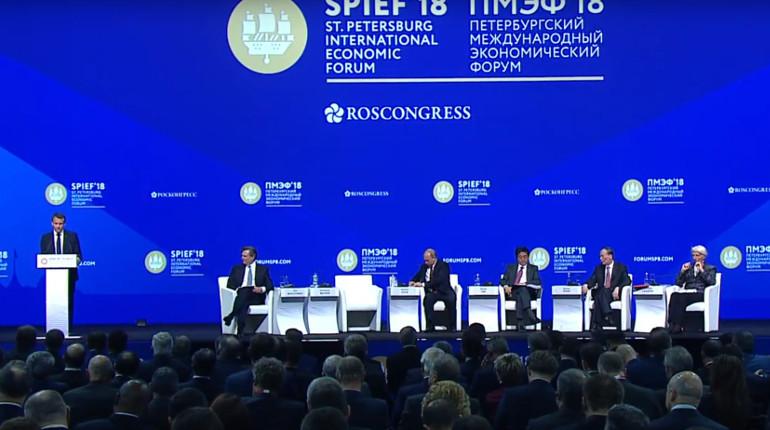 Франция желает стать лидером пообъему вложений денег в РФ