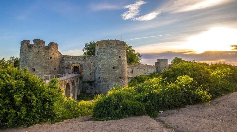 Раскопки древних замков стали новым модным видом отдыха в Ленобласти