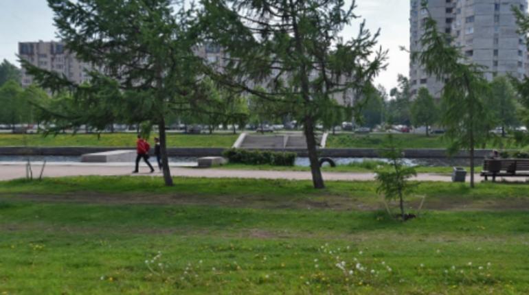 Петербуржца подозревают в растлении 5-летней девочки