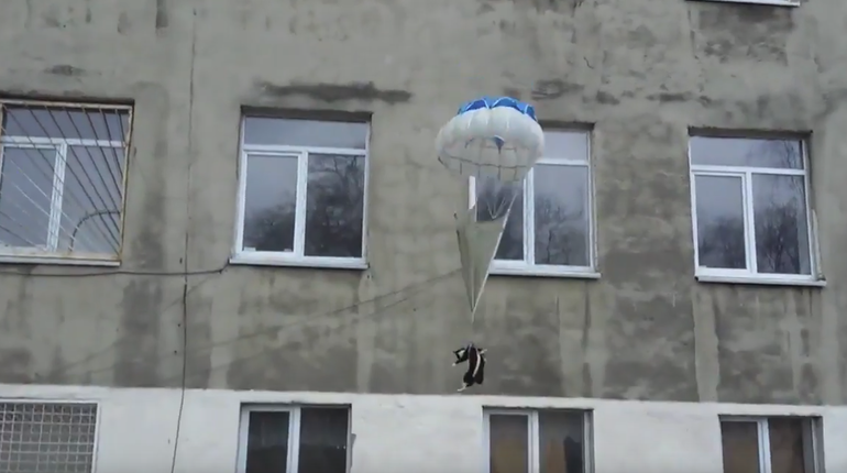 Депутат Анохин просит защитить спущенного с парашютом кота