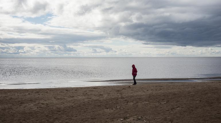 Озера Петербурга и Ленобласти исчезают за заборами