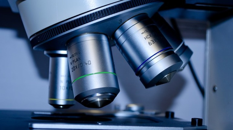 Швейцарские ученые разработали аналог костного мозга