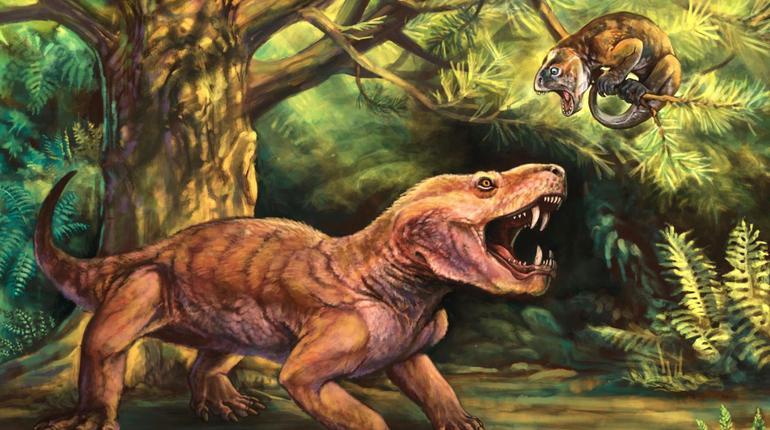 Ученые обнаружили окаменелости двух новых видов саблезубых хищников. Они были найдены в европейской части России недалеко от города Котельнич на берегу реки Вятка.