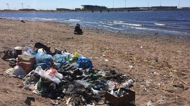 Чистый пляж оказался вне зоны ответственности Смольного