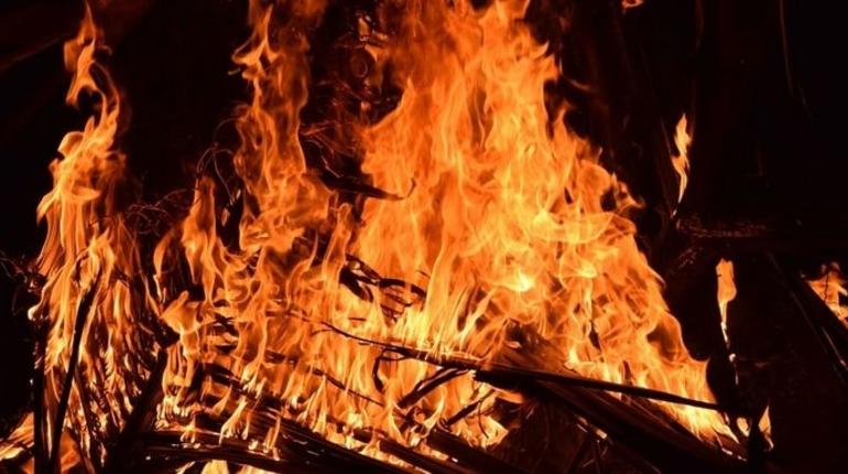 Человек сгорел при пожаре в Ленобласти