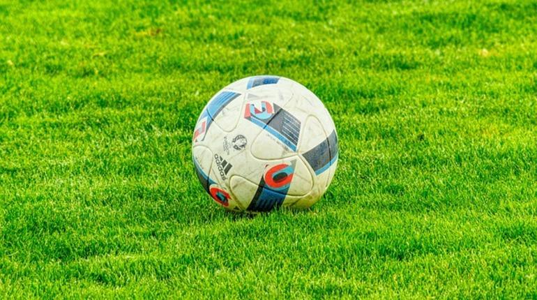 В Ленобласти сборная Хорватии провела тренировку с детьми