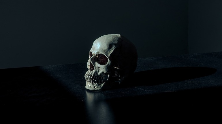 Петербургские ученые нашли в Туве череп, подвергшийся трепанации