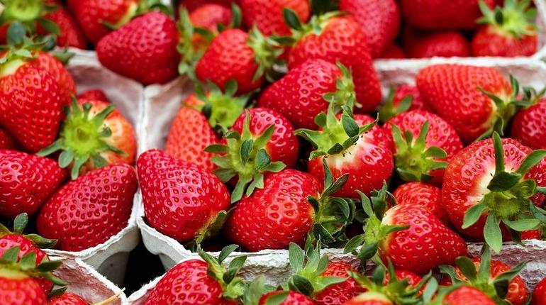 Сотрудники Роспотребнадзора по Петербургу расскаали, как не ошибиться с выбором клубники. Вкусные ягоды, как оказалось, можно найти, взглянув на черенок.
