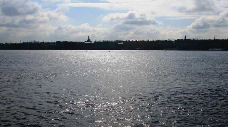 В Санкт-Петербурге обнаружено изуродованное тело мужчины, труп плыл по Неве неподалеку от района Петровской косы.