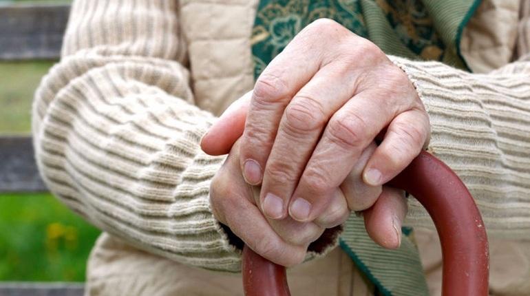 Прокуратура Калининского района Санкт-Петербурга провела проверку пансионата для пожилых людей «Яблоневый сад».