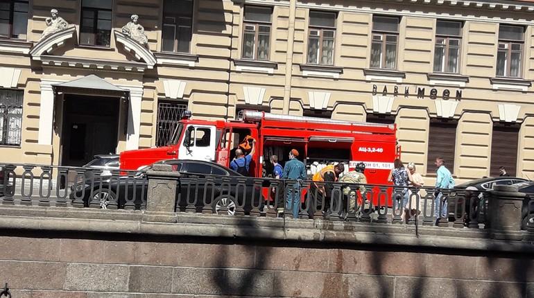 В центре Петербурга развернулась целая спасательная операция – из канала Грибоедова доставали котенка.
