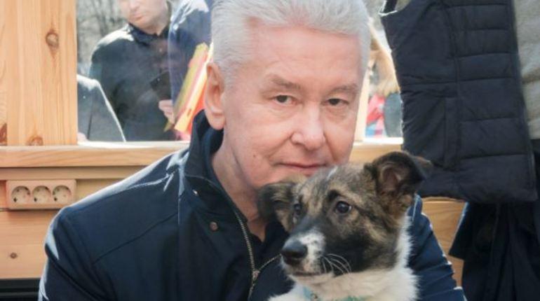 Мэр столицы России Сергей Собянин рассказал о жизни с щенком Джоуи, которого он взял на площадке фестиваля