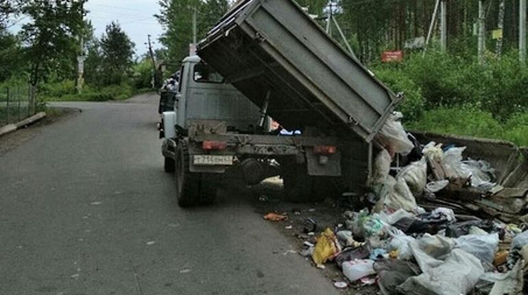 Экоактивисты зафиксировали факт сваливания бытового мусора из грузовиков прямо на обочину дороги в районе СНТ