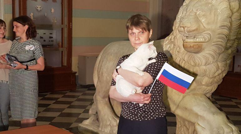 Эрмитажный кот-предсказатель Ахилл определился с победителем матча Россия — Египет. Игра пройдет в рамках ЧМ-2018 на стадионе