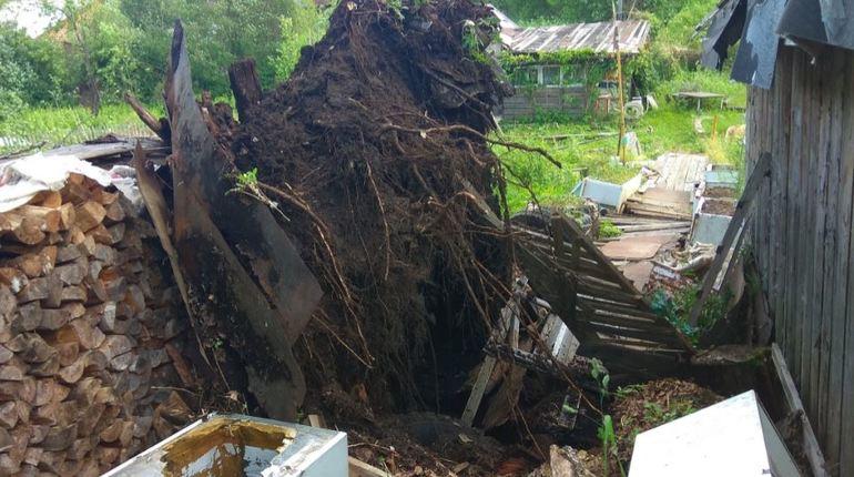 В социальных сетях появились кадры, на которых прекрасно видны последствия сильного ветра: вырванные с корнем деревья, сломанные крыши домов, помятые автомобили.