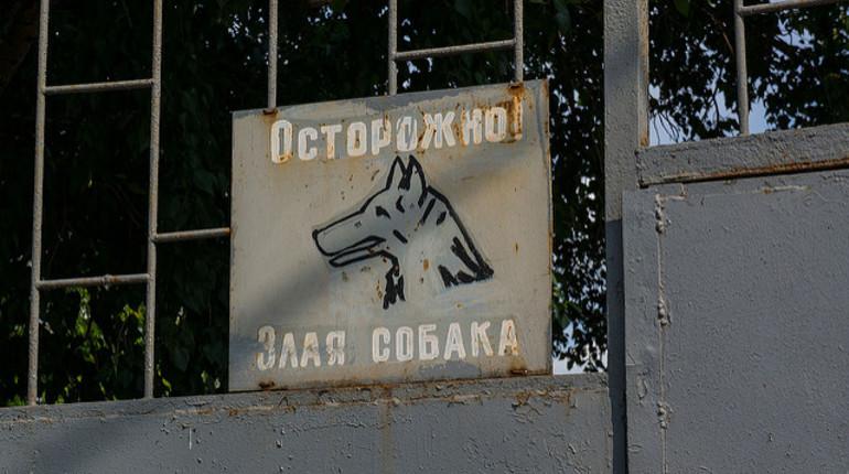 В Петербурге одобрили штрафы для дачников за отсутствие табличек «злая собака»