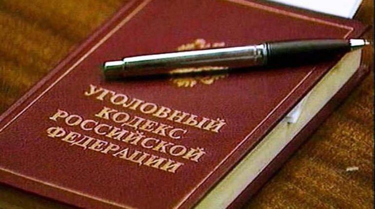 Петербургские следователи задержали в Ульяновске коллектора, угрожавшего расправой петербуржцам и им детям за несуществующие долги.