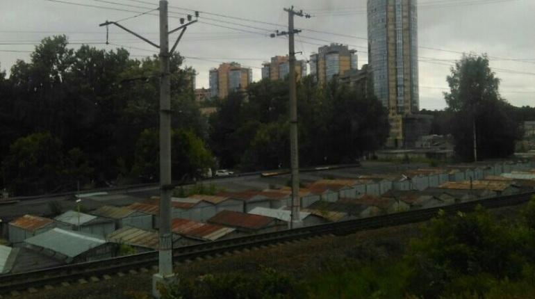 Упавшее дерево остановило электричку до Зеленогорска