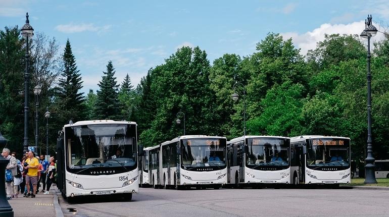«Пассажиравтотранс» выделил 120 автобусов для матча Швеция-Швейцария