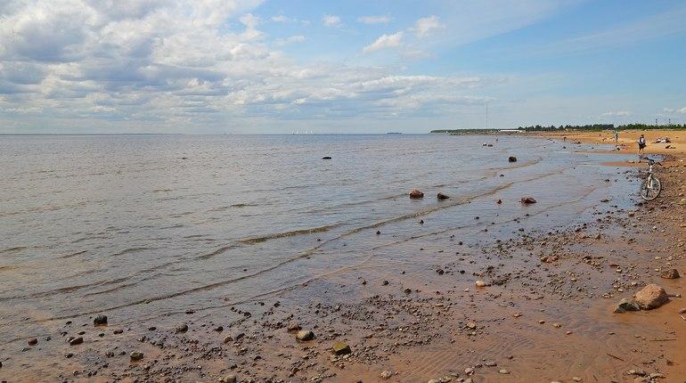 Инспекция Росприроднадзора выяснила, что на некоторых участках Ленобласти закрыт доступ к озеру