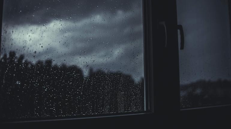 В Ленобласть вернулось тепло, но жители региона продолжат мокнуть под дождем