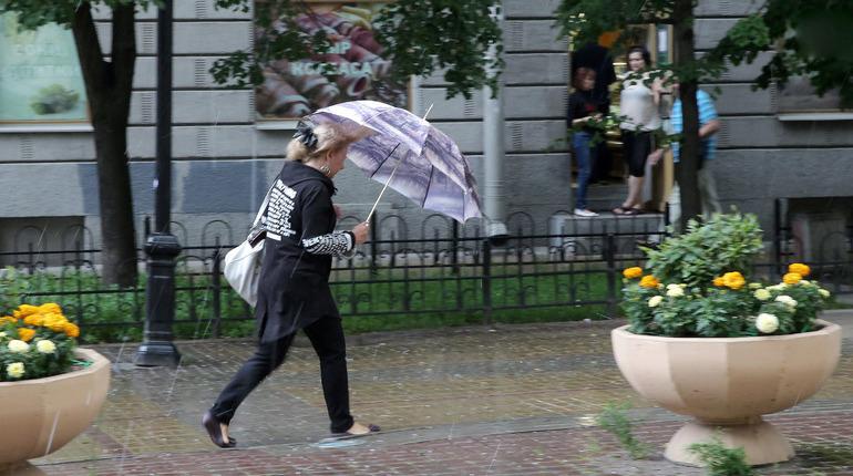 Петербуржцев ждет дождливая пятница