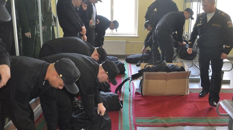 В Петербурге 40 новобранцев отправили в научные роты