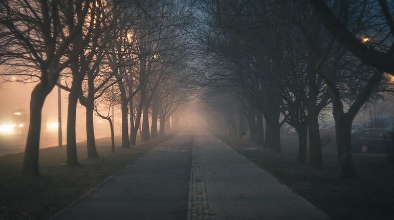 Ленобласть погрузится в туман