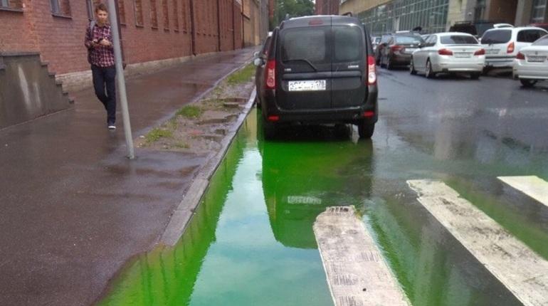 Петербуржцев напугала зеленая лужа на Выборгской набережной
