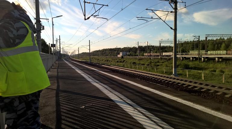 В Ленобласти ищут отрезанную поездом кисть человека