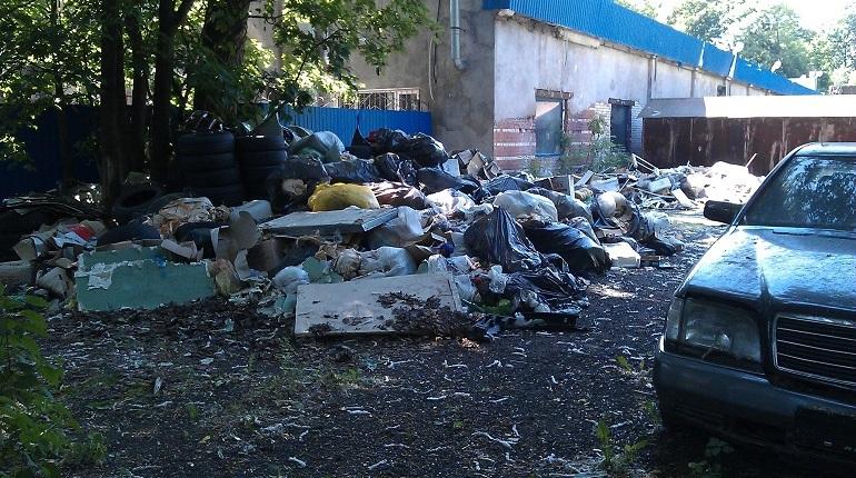 Чиновники при помощи фото расправились со свалкой на Васильевском острове