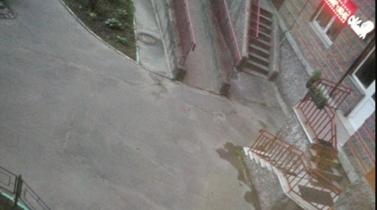 Женщина упала с высоты на проспекте Ветеранов
