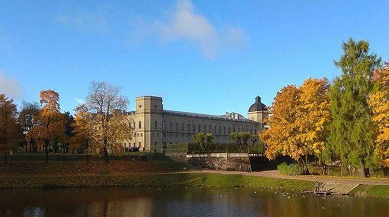 Судьбу Гатчинского дворца после Октября можно проследить на выставке «Гатчина. 1917»