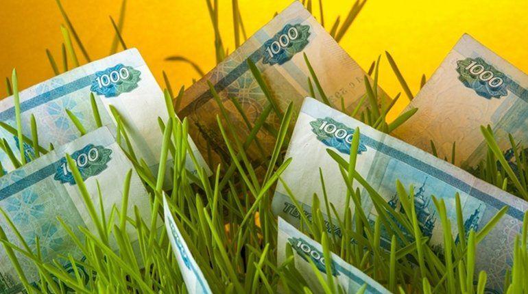 В Ленобласти бухгалтеры ОМВД увели 77 млн рублей