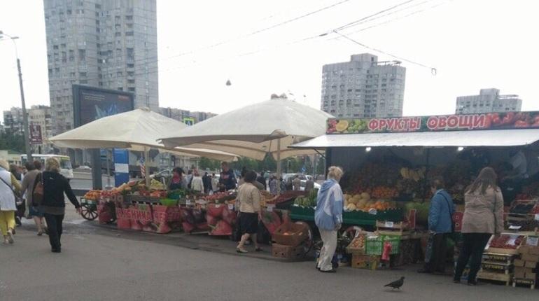 Прокуратура разберется со стихийной торговлей у метро «Приморская»