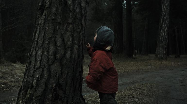 Под Гатчиной спасатели искали заблудившихся в лесу детей